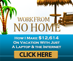 Work from No Home Review - A Millionaire's Training for Less than $30?